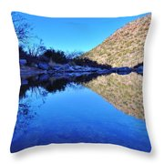 Bear Canyon Pool Throw Pillow