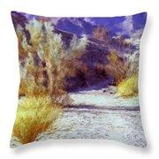 Bear Creek Trail II Throw Pillow