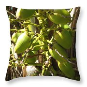 Bear Fruit Throw Pillow