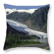 Bear Glacier Throw Pillow