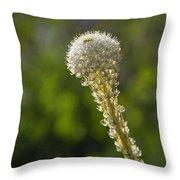 Bear Grass Glow Throw Pillow