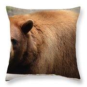 Bear In The Bath Throw Pillow