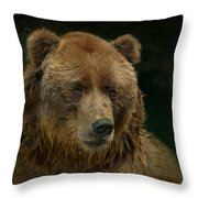 Bear In The Pool Throw Pillow