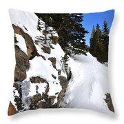 Bear Lake 4451 2 Throw Pillow
