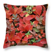 Bearberry In Autumn Yukon Canada Throw Pillow