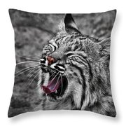 Bearizona Bobcat Throw Pillow by Priscilla Burgers