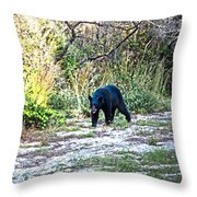 Bearly Stroll Throw Pillow