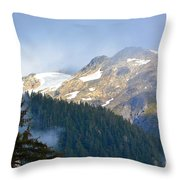 Bears With A View Throw Pillow