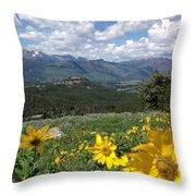 Beartooth Blooms Throw Pillow