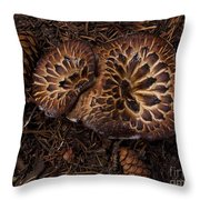 Beartooth Mountain Mushrooms   #9142 Throw Pillow