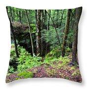Beartown Rocks State Park Throw Pillow