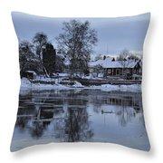 Beatiful Arboga Throw Pillow