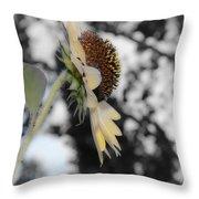 Beatiful Flower Throw Pillow
