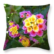 Beaucoup Of Blooms Throw Pillow
