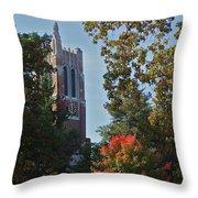 Beaumont Throw Pillow