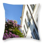 Windows With Flowers Throw Pillow