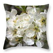 Beautiful Apple Blossoms Throw Pillow
