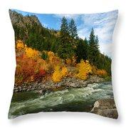 Beautiful Autumn Throw Pillow by Dan Mihai
