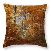 Beautiful Autumn Sanctuary Throw Pillow