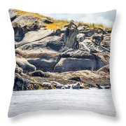 Seals And Rock Scupltures Throw Pillow