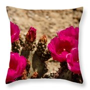 Beautiful Beavertail Cactus Throw Pillow