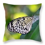 Beautiful Black N White Rice Paper Butterfly Throw Pillow