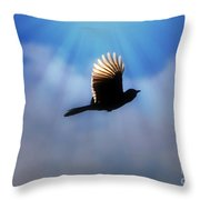 Beautiful Blue Jay In Flight Silhouette Throw Pillow