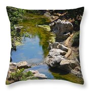 Beautiful Brook Throw Pillow