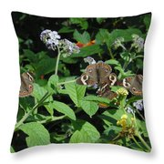 Beautiful Buckeyes Throw Pillow