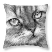 Beautiful Cat Throw Pillow by Olga Shvartsur