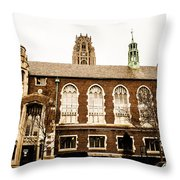 Beautiful Chicago Structures 3 Throw Pillow