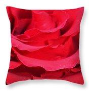 Beautiful Close Up Of Red Rose Petals  Throw Pillow