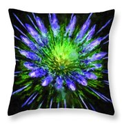 Beautiful Colorful Holiday Fireworks 1 Throw Pillow