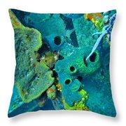 Beautiful Coral  Throw Pillow