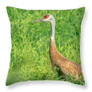 Beautiful Crane Throw Pillow