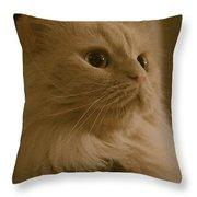 Beautiful Creamy Persian Cat Mix Portrait Throw Pillow