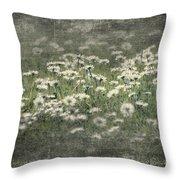 Beautiful Daisies Throw Pillow