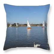 Beautiful Day By The River Throw Pillow