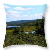 Beautiful Day In The Country Throw Pillow