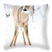 Beautiful Deer Throw Pillow