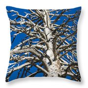 Beautiful Even Naked Throw Pillow