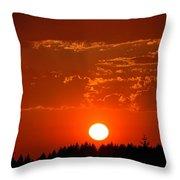Beautiful Evening I Throw Pillow