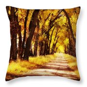 Beautiful Fall Day In Nebraska Throw Pillow