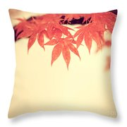 Beautiful Fall Throw Pillow by Hannes Cmarits