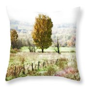 Beautiful Fall Landscape - Looks Like A Painting Throw Pillow