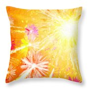 Beautiful Fireworks Throw Pillow