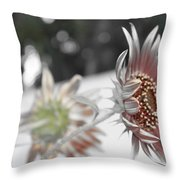 Beautiful Flowers Throw Pillow