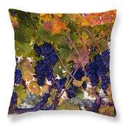 Beautiful Grape Harvest Throw Pillow