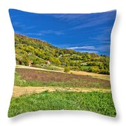 Beautiful Green Hill With Vineyard Cottages Throw Pillow