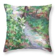 Beautiful Hike Throw Pillow